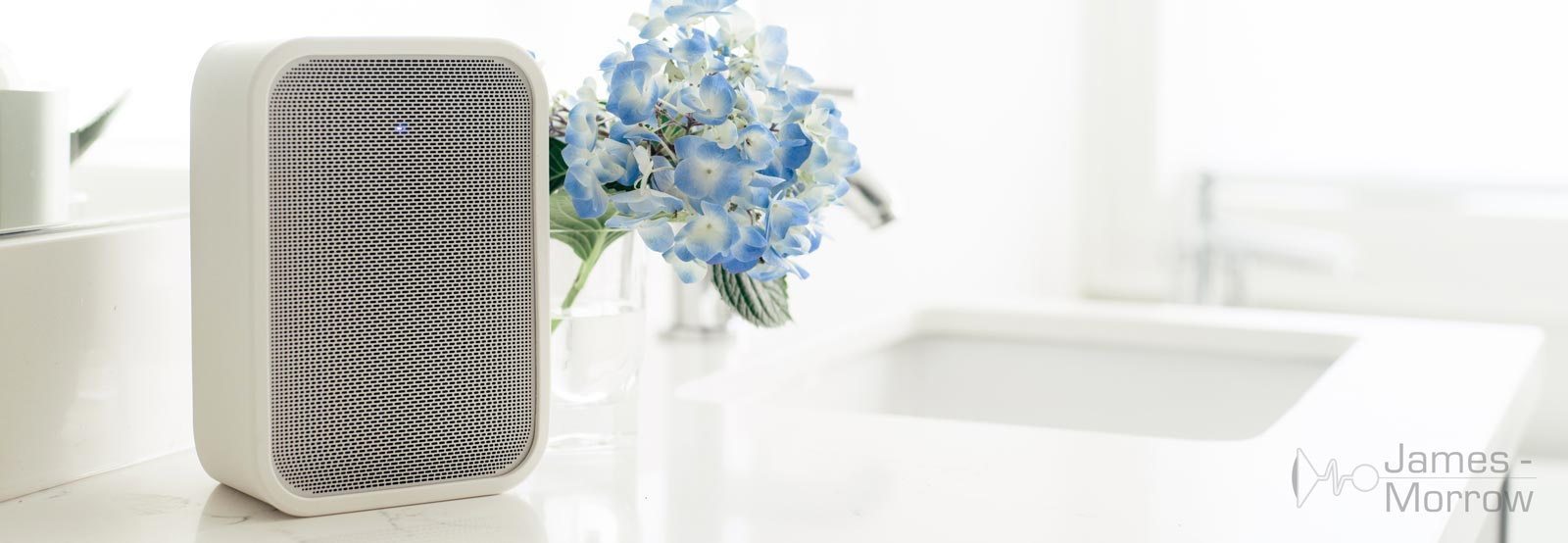 bluesound pulse flex 2i white on white table with blue flowers lifestyle banner image